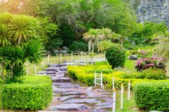 Walkway path in the green lawn garden, landscape of  fresh nature Royalty Free Stock Photography