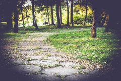 Walkway pathway s curve in public park with fallen leaves beautiful nature background stock image