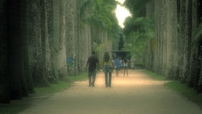Walkway and People at Jardim Botanico Botanical Garden