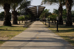Walkway perspective. In the park surround with palm tree stock photo