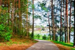 Walkway in pine forest in Druskininkai spring. Walkway in the pine forest in Druskininkai, Lithuania. Spring royalty free stock photos