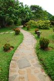 Walkway and plant in garden. They are walkway and plant in garden.this place is near office in thailand Royalty Free Stock Photos