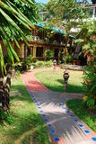 Walkway and plant in garden. They are walkway and plant in garden.this place is near office in thailand Stock Photos