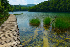 Walkway in Plitvice Lakes National Park Royalty Free Stock Photo