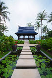 Walkway on pond full of water lilies in tropical garden. Royalty Free Stock Photography