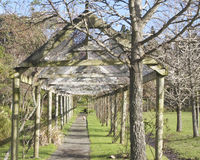 Walkway with a portico in Tauranga, New Zealand. Bird garden in Tauranga had this walkway with a portico along its length Stock Photos