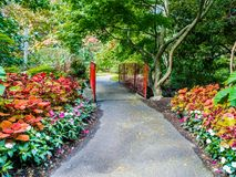 Walkway in  the public Beacon Hill Park, Victoria BC, Canada Stock Image