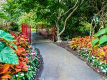 Walkway in  the public Beacon Hill Park, Victoria BC, Canada Stock Photo