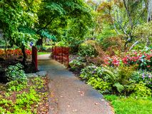 Walkway in  the public Beacon Hill Park, Victoria BC, Canada Stock Photography