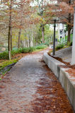 Walkway through public park in winter Royalty Free Stock Photo