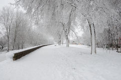 Walkway beside river covered in snow in winter Royalty Free Stock Image