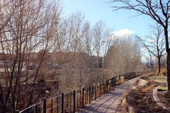 Walkway by the River. A walkway follows the Santa Fe River Stock Images