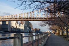 Walkway on Roosevelt Island. With the East Side of manhattan and the 59th Street Bridge in background Royalty Free Stock Photo