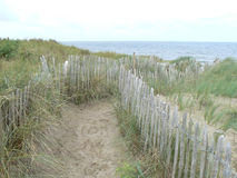 Walkway through the sand dunes to the beach Royalty Free Stock Image