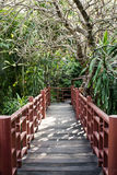 Walkway on second floor surrounded by trees. Royalty Free Stock Photo