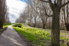 A walkway through a park in Palmerston North New Zealand. A walkway with shadows of trees through a park in Palmerston North New Zealand lined by trees royalty free stock photo