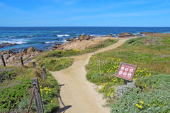 Walkway and sign for Asilomar State beach in Pacific Grove, Cali Royalty Free Stock Images