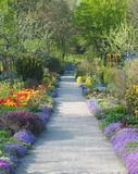 Walkway Through  Spring Blossoms Stock Photo