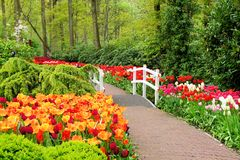 Walkway through spring flowers Royalty Free Stock Images