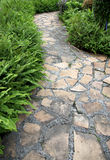 Walkway Stone. In the backyard Royalty Free Stock Photography
