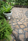 Walkway Stone. In the backyard Stock Photos