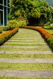 Walkway. Stone walkway in garden and sunshine Stock Photo