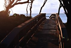 Walkway at sunrise. A wooden walkway to the beach as seen at sunrise Stock Images