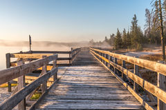 Walkway in the sunrise on a misty morning. Photo is taken in Yellowstone National Park in West Thumb Geyser Basin a morning in September. The wooden walkway is Stock Photo