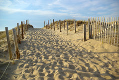 Walkway to the Beach. Sandy walkway leading to a beach in Cape Cod Royalty Free Stock Image