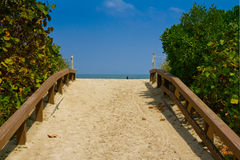 Walkway to the beach Stock Photography