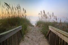Walkway to the Beach Outer Banks. Sand covered pedestrian walkway through sea oats to the beach at sunrise on the Outer Banks of North Carolina Royalty Free Stock Images