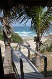 Walkway to the beach. Palm-tree ocean view  waves Mozambique Stock Photos
