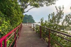 Walkway to beach. Pedestrian walkway to beach with blue skies Royalty Free Stock Image
