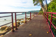 Walkway to beach Stock Photography
