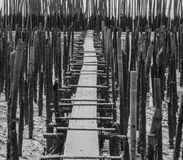 Walkway to the beach in thailand beach,A second wave of anti-bam Royalty Free Stock Image