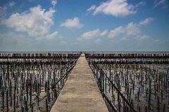 Walkway to the beach in thailand beach,A second wave of anti-bam Royalty Free Stock Photography