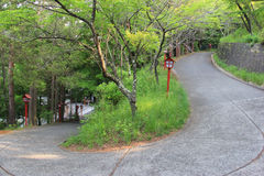 Walkway to Chureito Pagoda in Japan Royalty Free Stock Image