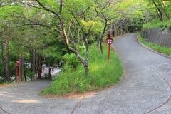 Walkway to Chureito Pagoda in Japan Royalty Free Stock Image