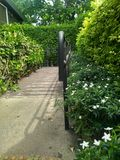 The walkway to the coffee shop as a small garden. Walkway coffee shop small garden royalty free stock photo