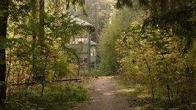 Walkway to the deserted house in the forest. Autumn daytime. Smooth dolly shot stock footage