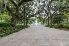 Walkway to Forsyth Park Fountain stock image
