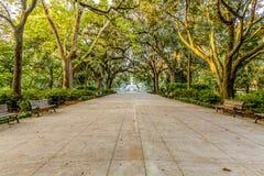 Walkway to Fountain Under Oaks stock image