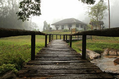 Walkway to house with forest Stock Photos