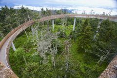 Walkway to the Island in the Sky Clingman's Dome Tower GSMNP Stock Images