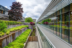 Walkway to main quadrangle, SImon Fraser University, Burnaby, BC Royalty Free Stock Photography