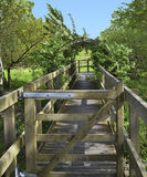 Walkway to a observation area at Dartington UK. A wooden walkway to an observation area overlook a field. Location Dartington Estate Devon England Royalty Free Stock Photography