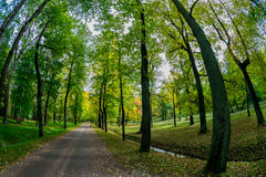 Walkway to relax in the park. Inexpressibly pleasant walk in the evening in the park, where you can escape from the everyday problems, from the working Royalty Free Stock Images