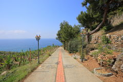 Walkway to the sea Stock Photo