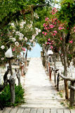 Walkway to the sea, among oleander and Lantern Royalty Free Stock Photography