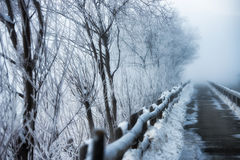 Walkway. To winter frost in the mountain Royalty Free Stock Photos